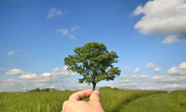 Jenis - jenis Sumber Daya Alam (SDA) Dan Macam dan Contohnya - Pengertian sumber daya alam pada umumnya ialah segala hal yang berasal dari alam
